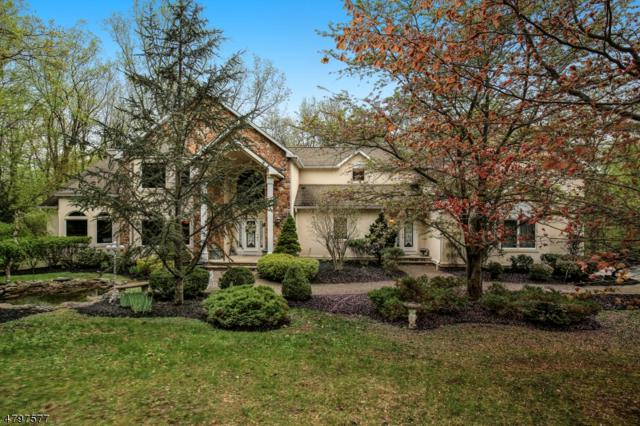 12 Liberty Hills Ct, Washington Twp., NJ 07853 (MLS #3468720) :: William Raveis Baer & McIntosh