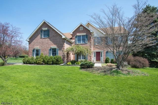 15 Ranney Rd, Washington Twp., NJ 07853 (MLS #3468930) :: The Sue Adler Team