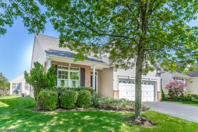 5 Bray Ct, Franklin Twp., NJ 08873 (MLS #3469115) :: The Sue Adler Team