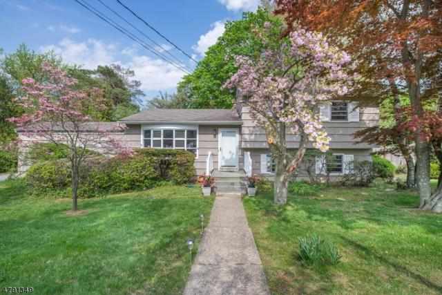 21 Pleasant Hill Rd, Roxbury Twp., NJ 07876 (MLS #3469143) :: The Sue Adler Team