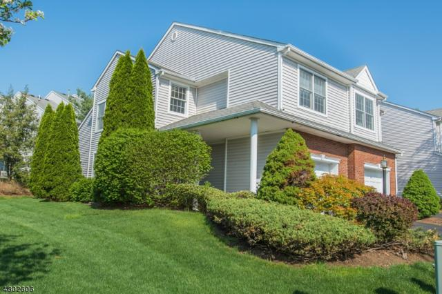 1 Schindler Ct, Boonton Twp., NJ 07005 (MLS #3469271) :: William Raveis Baer & McIntosh