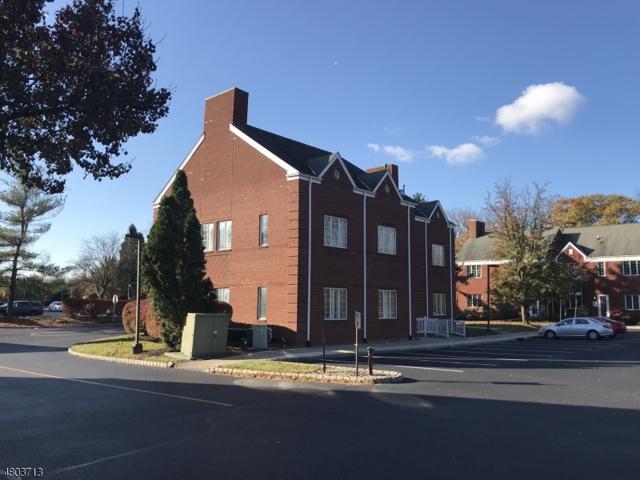 911 Courtyard Dr, Hillsborough Twp., NJ 08844 (MLS #3470616) :: RE/MAX First Choice Realtors