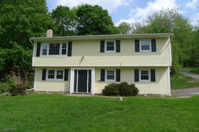 66 Shore Rd, Green Twp., NJ 07821 (MLS #3470735) :: William Raveis Baer & McIntosh