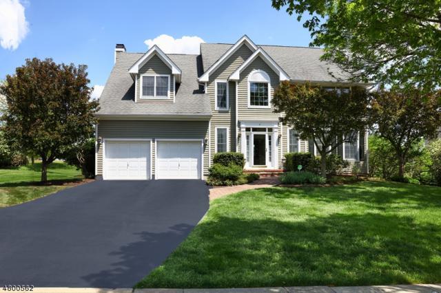 7 Spyglass Rd, Montgomery Twp., NJ 08558 (MLS #3470747) :: The Dekanski Home Selling Team