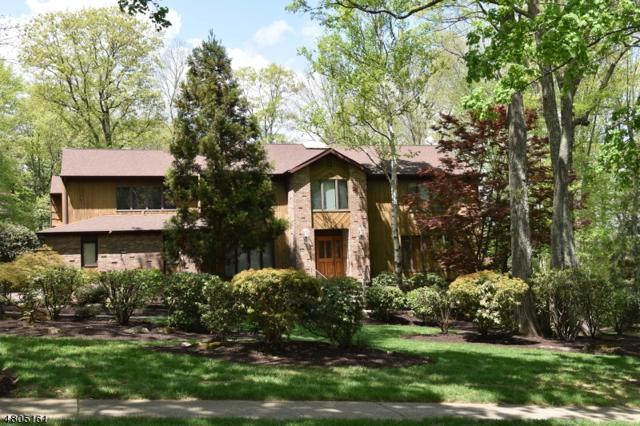 34 Tammy Hill Trl, Randolph Twp., NJ 07869 (MLS #3471585) :: The Douglas Tucker Real Estate Team LLC