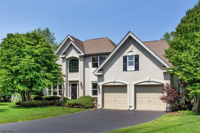 7 Tanglewood Ct, Montgomery Twp., NJ 08558 (MLS #3471609) :: The Dekanski Home Selling Team