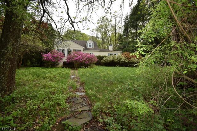 2 Doby Rd, Randolph Twp., NJ 07869 (MLS #3471696) :: William Raveis Baer & McIntosh