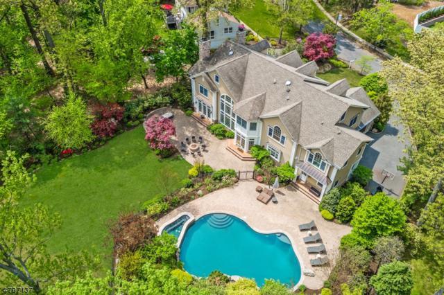 306 Roanoke Rd, Westfield Town, NJ 07090 (MLS #3471761) :: SR Real Estate Group