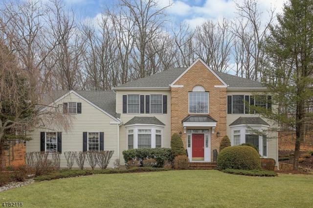 7 Edinburgh Dr, Randolph Twp., NJ 07869 (MLS #3471857) :: The Douglas Tucker Real Estate Team LLC