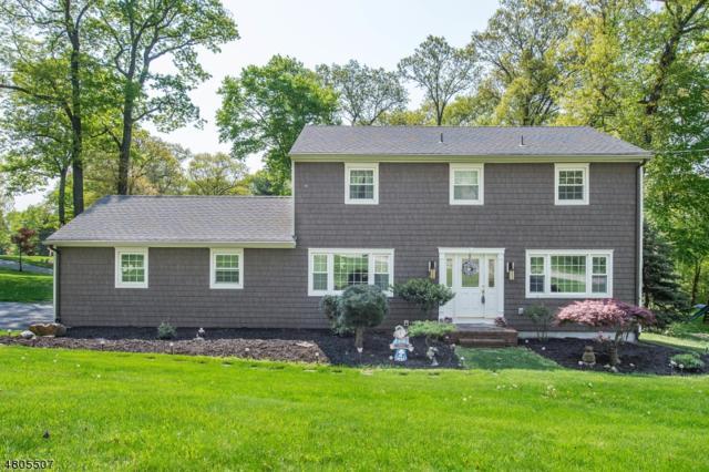 57 Misty Mountain Road, Randolph Twp., NJ 07869 (MLS #3471962) :: The Douglas Tucker Real Estate Team LLC