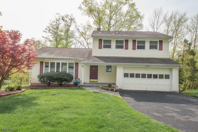 54 Radtke Rd, Randolph Twp., NJ 07869 (MLS #3472180) :: The Douglas Tucker Real Estate Team LLC