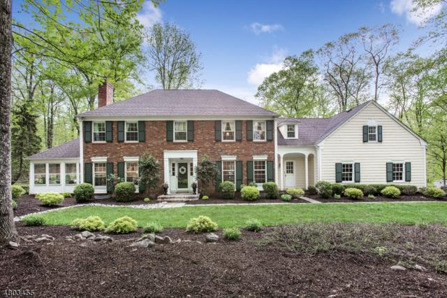 25 N Gate Rd, Mendham Twp., NJ 07945 (MLS #3472369) :: The Sue Adler Team