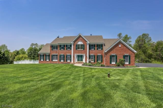 12 Middlesworth Farm Rd, Washington Twp., NJ 07853 (MLS #3472695) :: The Sue Adler Team