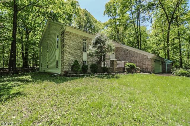 189 Pleasant Grove Rd, Fl, Washington Twp., NJ 07853 (MLS #3472951) :: SR Real Estate Group