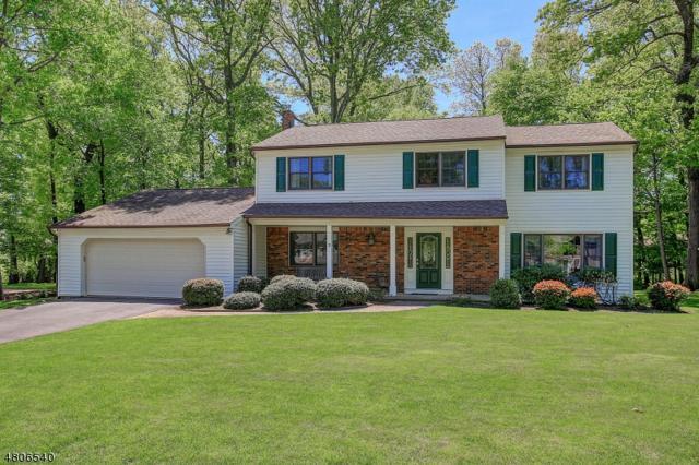 7 Ash Ln, Randolph Twp., NJ 07869 (MLS #3473017) :: The Douglas Tucker Real Estate Team LLC