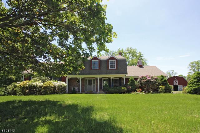 20 Hamp Rd, Delaware Twp., NJ 08530 (MLS #3473060) :: Jason Freeby Group at Keller Williams Real Estate