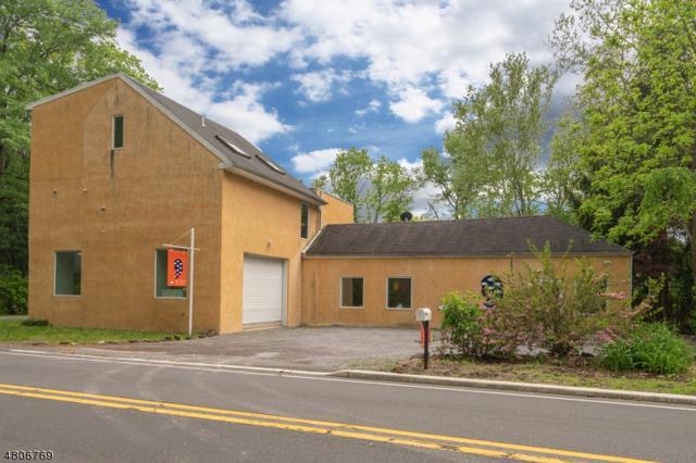 21 Risler St, Stockton Boro, NJ 08559 (#3473140) :: Jason Freeby Group at Keller Williams Real Estate