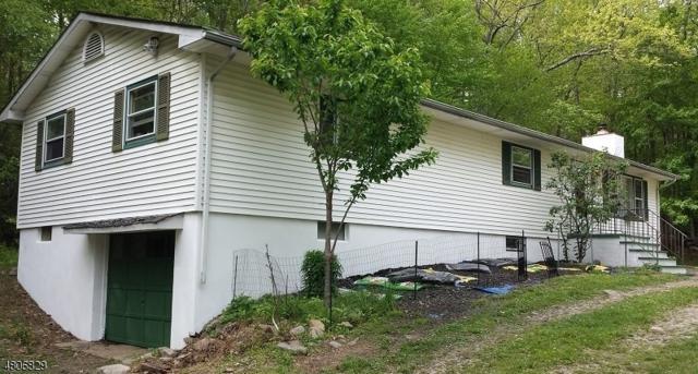 1045 County Road 521, Stillwater Twp., NJ 07860 (MLS #3473174) :: William Raveis Baer & McIntosh