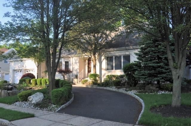 19 Pavlocak Ct, Edison Twp., NJ 08820 (#3473268) :: Daunno Realty Services, LLC
