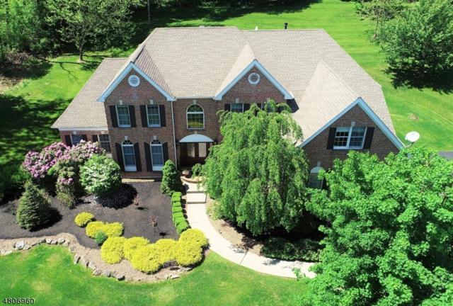 11 Old Schoolhouse Rd, Bethlehem Twp., NJ 08802 (MLS #3473301) :: Jason Freeby Group at Keller Williams Real Estate