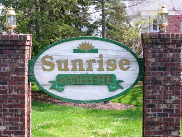 12 Sunrise Dr #12, Long Hill Twp., NJ 07933 (MLS #3473306) :: William Raveis Baer & McIntosh