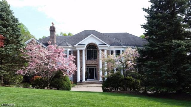 24 Glenview Dr #24, Warren Twp., NJ 07059 (MLS #3473314) :: Jason Freeby Group at Keller Williams Real Estate
