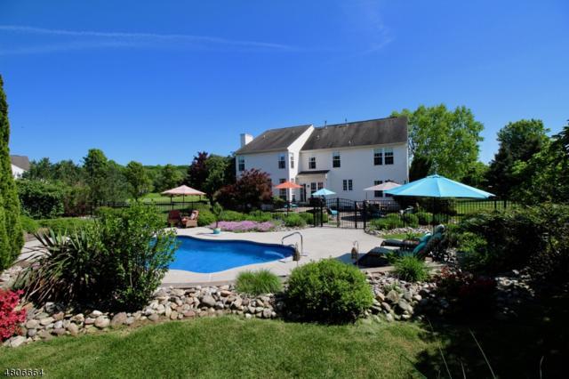 17 Dally Rd, Raritan Twp., NJ 08822 (MLS #3473329) :: The Dekanski Home Selling Team
