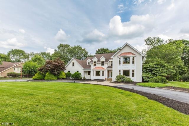 2 Castle Ct, Randolph Twp., NJ 07869 (MLS #3473563) :: The Douglas Tucker Real Estate Team LLC