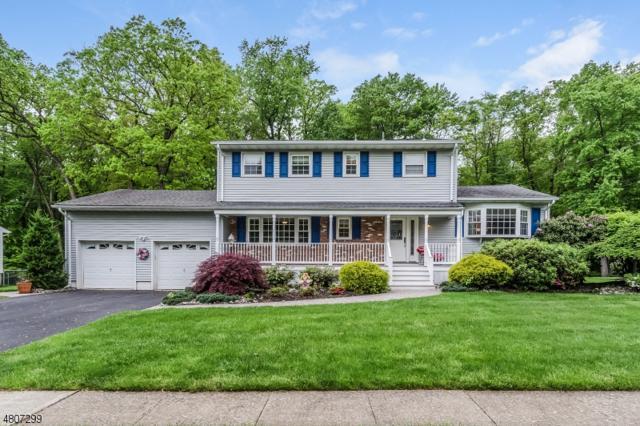 70 Toby Dr, Roxbury Twp., NJ 07876 (MLS #3473605) :: The Dekanski Home Selling Team