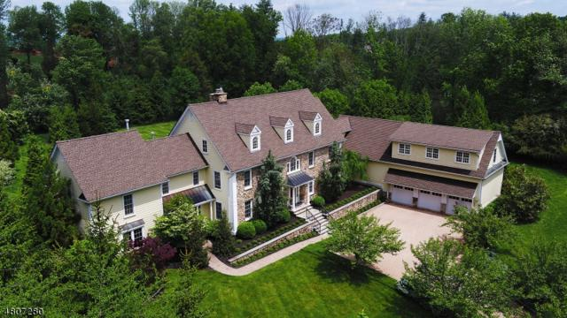 57 Overlook Ave, Bernards Twp., NJ 07920 (MLS #3473616) :: SR Real Estate Group
