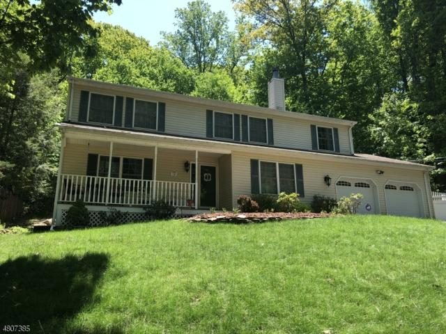 18 Mohican Ave, Roxbury Twp., NJ 07850 (MLS #3473692) :: The Sue Adler Team