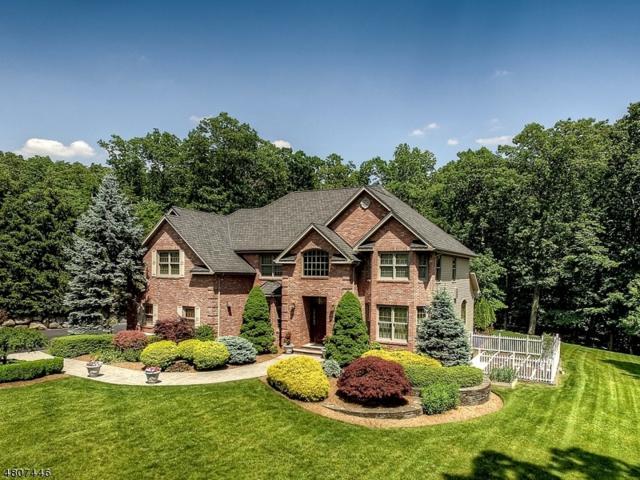 10 Mountainside Dr, Ringwood Boro, NJ 07456 (MLS #3473748) :: The Dekanski Home Selling Team