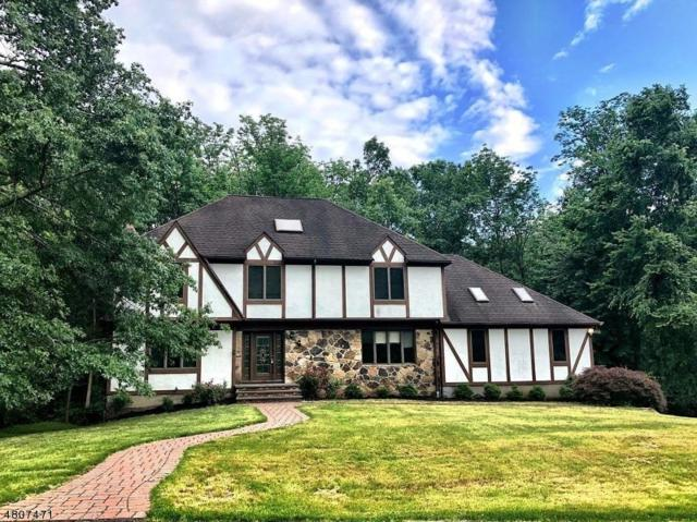 163 Cottage Pl W, Long Hill Twp., NJ 07933 (MLS #3473768) :: The Sue Adler Team