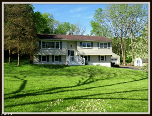 942 West End Drive, Stillwater Twp., NJ 07860 (MLS #3473838) :: The Sue Adler Team