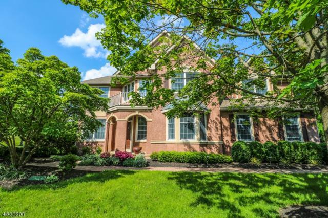 7 Sandpiper Ct, Montgomery Twp., NJ 08558 (MLS #3473882) :: The Dekanski Home Selling Team