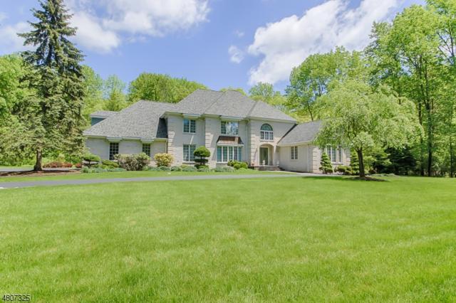 30 Cherokee Ct, Sparta Twp., NJ 07871 (MLS #3473940) :: The Dekanski Home Selling Team