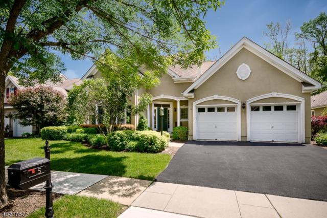 5 Bethpage Dr, Montgomery Twp., NJ 08558 (MLS #3473962) :: The Dekanski Home Selling Team