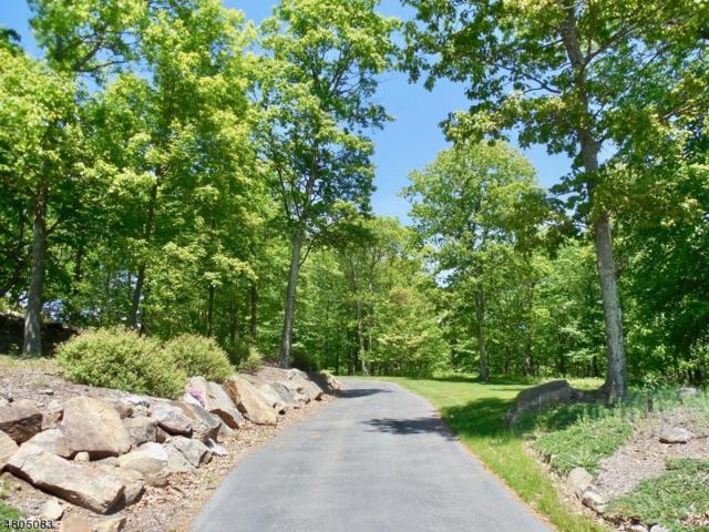 4 Carleys Way, Rockaway Twp., NJ 07866 (MLS #3473970) :: RE/MAX First Choice Realtors