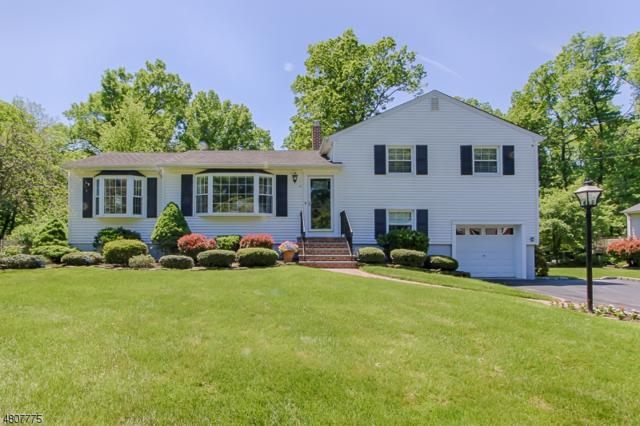 41 Perry St, Hanover Twp., NJ 07981 (MLS #3474059) :: The Sue Adler Team