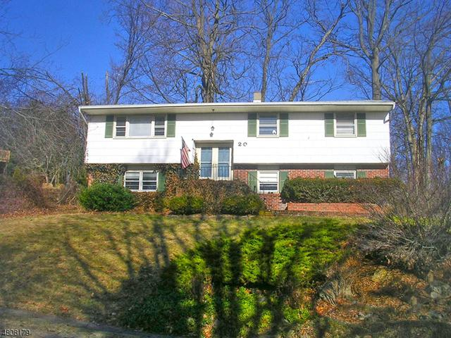 20 Louis Dr, Mount Olive Twp., NJ 07828 (MLS #3474437) :: William Raveis Baer & McIntosh