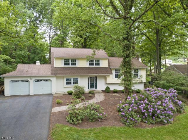 24 W Circuit Dr, Roxbury Twp., NJ 07876 (MLS #3475361) :: The Dekanski Home Selling Team
