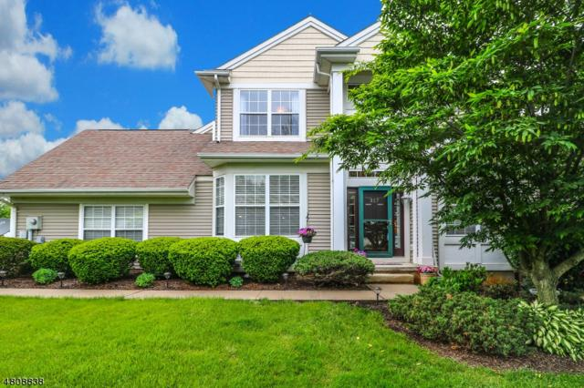 317 Clover Ct, Lopatcong Twp., NJ 08886 (MLS #3475803) :: The Sue Adler Team