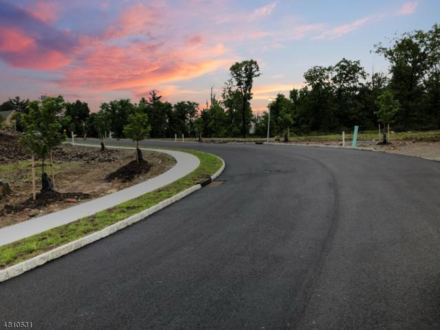 3 Windsor Drive, Montville Twp., NJ 07058 (MLS #3476939) :: The Dekanski Home Selling Team