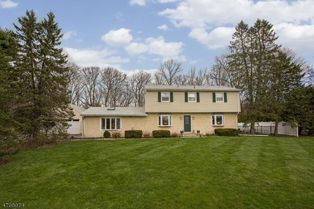 11 Lincoln Dr, Roxbury Twp., NJ 07836 (MLS #3476998) :: William Raveis Baer & McIntosh