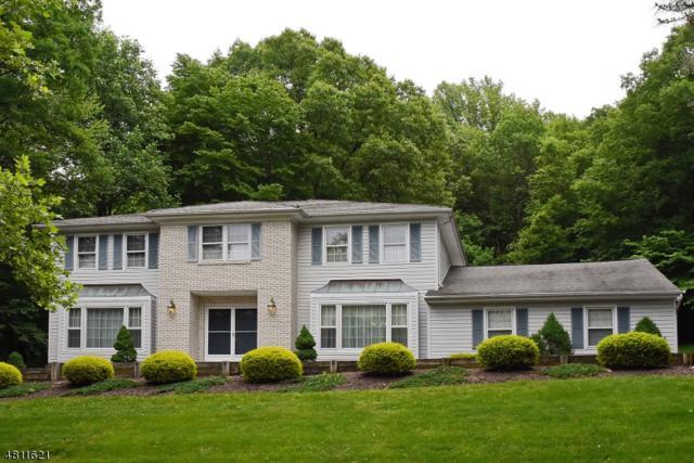 54 Birch Run Ave, Denville Twp., NJ 07834 (MLS #3477627) :: SR Real Estate Group