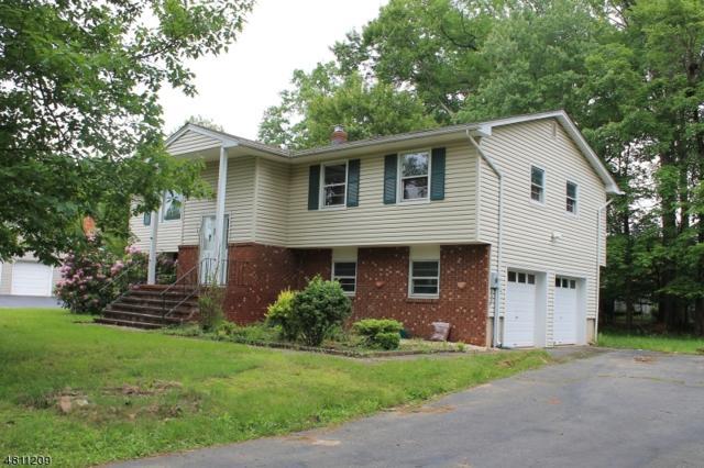 8 Whitegate Road, Roxbury Twp., NJ 07876 (MLS #3477954) :: The Dekanski Home Selling Team