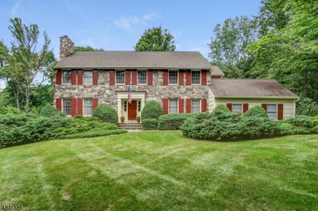 48 Eagle Nest Rd, Morris Twp., NJ 07960 (MLS #3478348) :: The Dekanski Home Selling Team