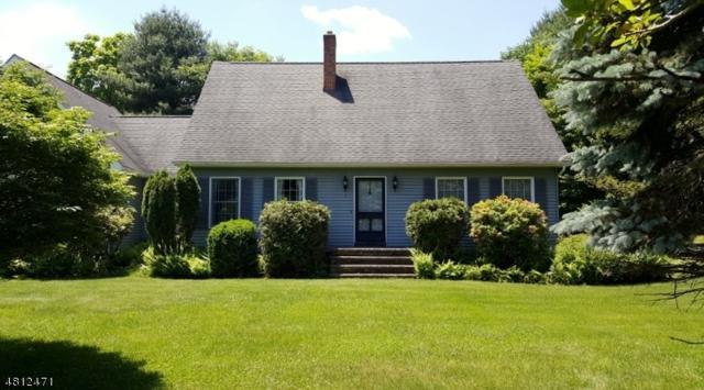 4 Grandview Ter, Montague Twp., NJ 07827 (MLS #3478523) :: The Dekanski Home Selling Team