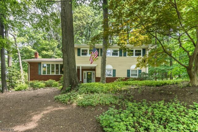 41 Old Mill Dr, Denville Twp., NJ 07834 (MLS #3478678) :: SR Real Estate Group