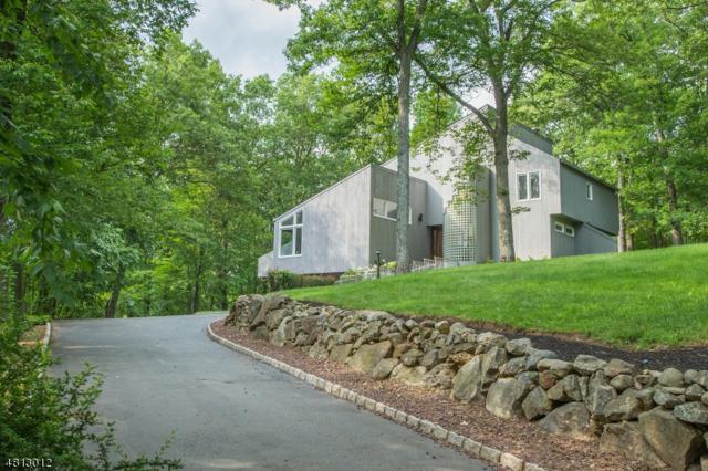 11 Mirador Court, Denville Twp., NJ 07834 (MLS #3478915) :: SR Real Estate Group